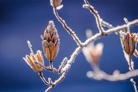 Zaštita zdravlja od hladnoće